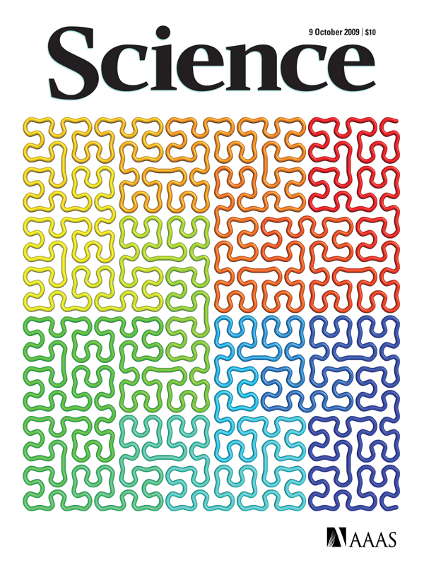 "COVER. First described by David Hilbert in 1891, the Hilbert curve is a one-dimensional fractal trajectory that densely fills higher-dimensional space without crossing itself. A new method for reconstructing the three-dimensional architecture of the human genome (Lieberman-Aiden, E., N. L. van Berkum, L. Williams, M. Imakaev, T. Ragoczy, A. Telling, I. Amit, et al. 2009. ""Comprehensive Mapping of Long-Range Interactions Reveals Folding Principles of the Human Genome."" Science 326 (5950): 289–293. ), reveals a polymer analog of Hilbert's curve at the megabase scale."